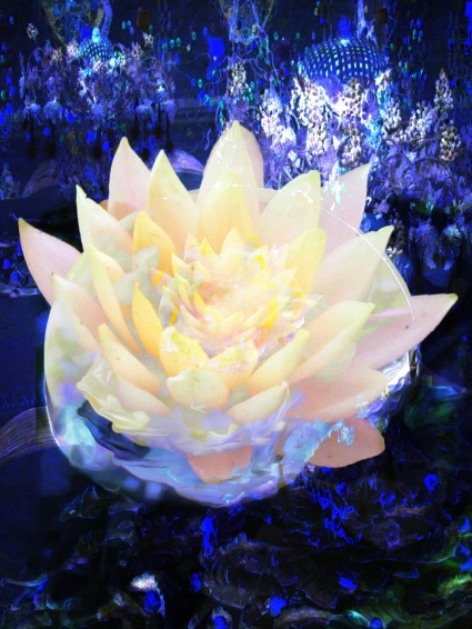 when it grew the power of ytolan was life force center mother solar plexus flower shines in night
