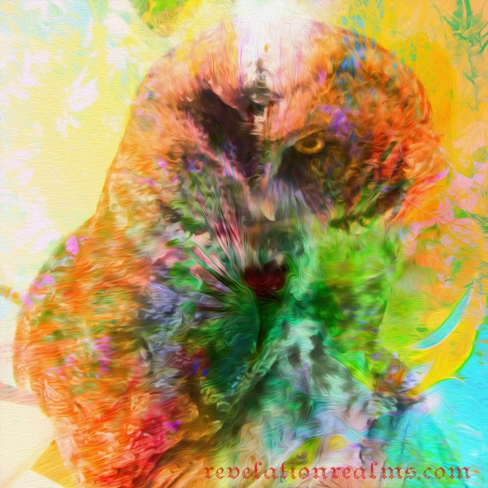Soul Owl painted with website